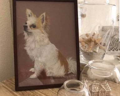 "Chihuahua ""Lucky"""